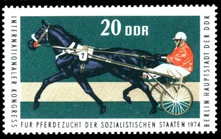 20 Pf Briefmarke: Kongreß für Pferdezucht