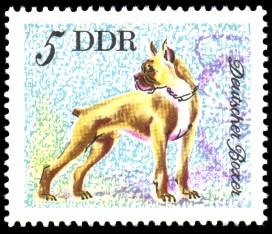 5 Pf Briefmarke: Hunde, Hunderassen, Deutscher Boxer