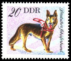 20 Pf Briefmarke: Hunde, Hunderassen, Deutscher Schäferhund