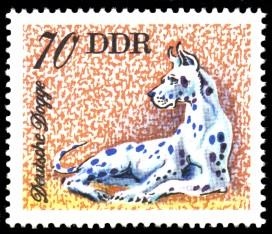 70 Pf Briefmarke: Hunde, Hunderassen, Deutsche Dogge