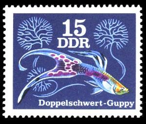 15 Pf Briefmarke: Zierfische, Doppelschwert-Guppy