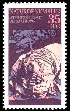 35 Pf Briefmarke: Naturdenkmäler, Steinerne Rose