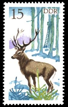 15 Pf Briefmarke: Jagd in der DDR, Rothirsch