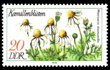20 Pf Briefmarke: Arzneipflanzen, Kamillenblüten