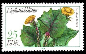 25 Pf Briefmarke: Arzneipflanzen, Huflattichblätter