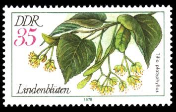 35 Pf Briefmarke: Arzneipflanzen, Lindenblüten