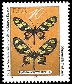 10 Pf Briefmarke: 250 Jahre Staatliche Wissenschaftliche Museen Dresden, Papilio hahneli
