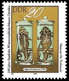 20 Pf Briefmarke: 250 Jahre Staatliche Wissenschaftliche Museen Dresden, Agama lehmanni
