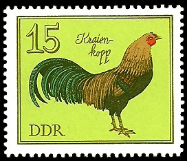 15 Pf Briefmarke: Rassegeflügel, Kraienkopp