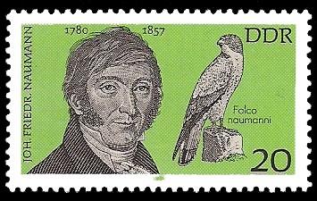 20 Pf Briefmarke: Bedeutende Persönlichkeiten, Joh. Friedr. Naumann