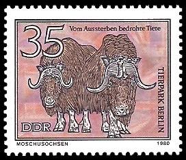 35 Pf Briefmarke: Vom Aussterben bedrohte Tiere, Moschusochse