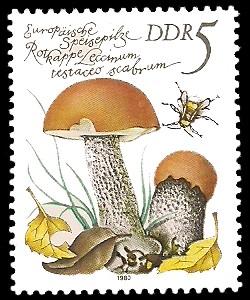 5 Pf Briefmarke: Europäische Speisepilze, Rotkappe