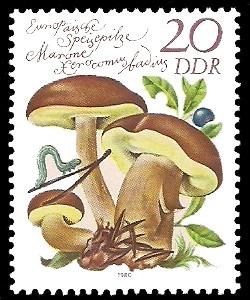 20 Pf Briefmarke: Europäische Speisepilze, Marone