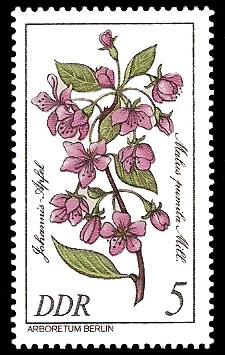 5 Pf Briefmarke: Seltenes Gehölz, Johannis-Apfel