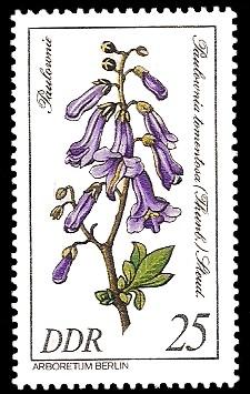 25 Pf Briefmarke: Seltenes Gehölz, Paulownie