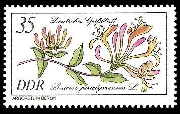 35 Pf Briefmarke: Seltenes Gehölz, Deutsches Geißblatt