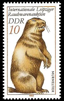 10 Pf Briefmarke: Internationale Leipziger Rauchwarenauktion, Murmeltier