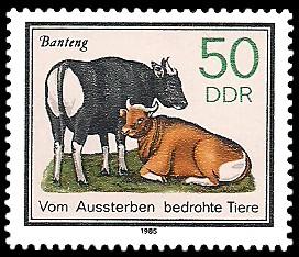 50 Pf Briefmarke: Vom Aussterben bedrohte Tiere, Banteng