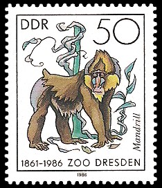 50 Pf Briefmarke: 125 Jahre Zoo Dresden, Mandrill