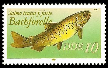 10 Pf Briefmarke: Süßwasserfische, Bachforelle