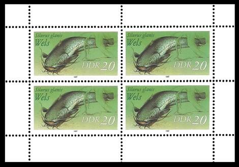 Briefmarke: Kleinbogen - Süßwasserfische, Wels