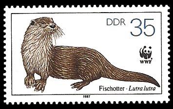 35 Pf Briefmarke: Vom Aussterben bedrohte Tiere, Fischotter