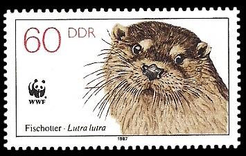 60 Pf Briefmarke: Vom Aussterben bedrohte Tiere, Fischotter