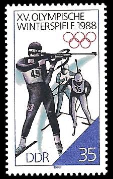35 Pf Briefmarke: XV. Olympische Winterspiele 1988, Biathlon