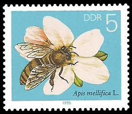 5 Pf Briefmarke: Die Biene, Obstblüte
