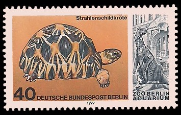 40 Pf Briefmarke: Aquarium im Zoo Berlin