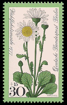 30 + 15 Pf Briefmarke: Wohlfahrtsmarke 1977, Wiesenblumen