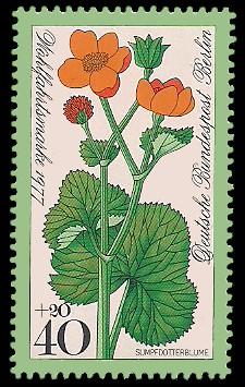 40 + 20 Pf Briefmarke: Wohlfahrtsmarke 1977, Wiesenblumen