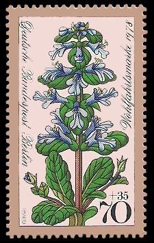 70 + 35 Pf Briefmarke: Wohlfahrtsmarke 1978, Waldblumen