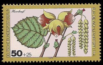 50 + 25 Pf Briefmarke: Wohlfahrtsmarke 1979, Wald-Blüten u Früchte