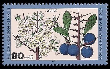 90 + 45 Pf Briefmarke: Wohlfahrtsmarke 1979, Wald-Blüten u Früchte