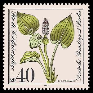 40 + 20 Pf Briefmarke: Wohlfahrtsmarke 1981, gefährdete Wasserpflanzen