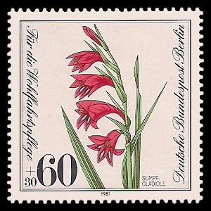 60 + 30 Pf Briefmarke: Wohlfahrtsmarke 1981, gefährdete Wasserpflanzen