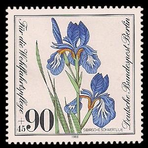 90 + 45 Pf Briefmarke: Wohlfahrtsmarke 1981, gefährdete Wasserpflanzen