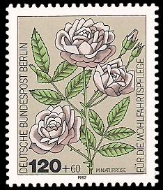 120 + 60 Pf Briefmarke: Wohlfahrtsmarke 1982, Rosen