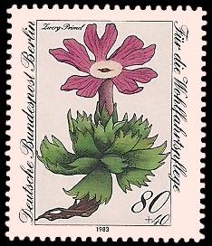 80 + 40 Pf Briefmarke: Wohlfahrtsmarke 1983, Alpenblumen