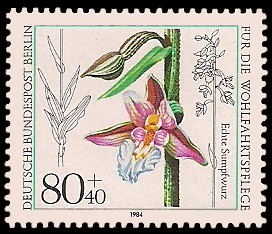 80 + 40 Pf Briefmarke: Wohlfahrtsmarke 1984, Orchideen